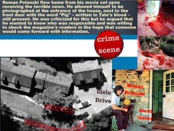 BUNDLE SERIAL MURDER Bundy Wuornos Brady Hindley Manson ViCAP ViCLAS