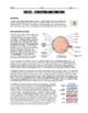 BUNDLE - Sense Organ Worksheets