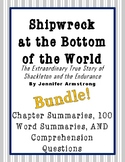BUNDLE! Shipwreck at the Bottom of the World - Summaries +