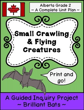 BUNDLE: Small Crawling & Flying Creatures!