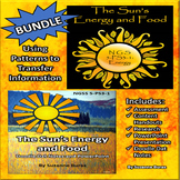 BUNDLE!  Sun's Energy and Food: Doodle Dat Notes, PowerPoint, Quiz