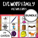 BUNDLE Word Family CVC Picture Cards