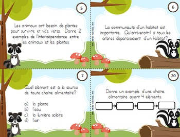 BUNDLE cartes à tâches sciences, 4e année (Science Task Cards Bundle in French)