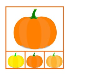 Look for the Pumpkin | Busca la Calabaza