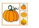 Pairs of Pumpkins | Parejas de Calabazas