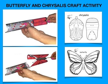 BUTTERFLY AND CHRYSALIS CRAFT ACTIVITY
