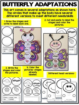 BUTTERFLY LIFE CYCLE ART ACTIVITY