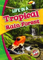 Life in a Tropical Rain Forest