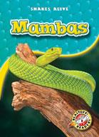 Mambas
