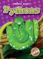 Pythons