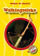 Walkingsticks