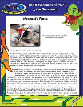 Multiple Intelligences: Pixel Adventure #1 - Mermaid's Purse