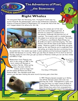 BYTES Power Smarts®: The Adventures of Pixel, the Stowaway, #11: Right Whales