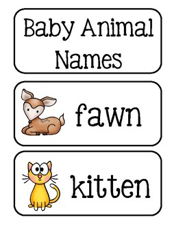 Baby Animal Names ~ Picture Word Cards