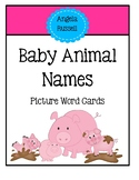 Baby Animal Names - Picture Word Cards