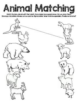 Animal Babies Worksheets - Animal Baby/Parent Matching