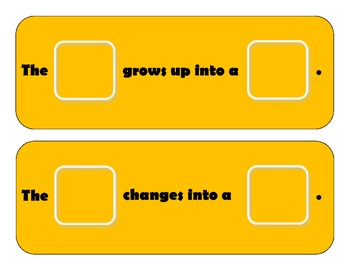 """""""Baby Animals Change & Grow Big"""" Flashcards/Matching,Sorting for Autism"""