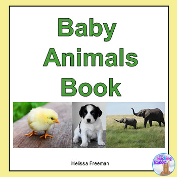 Baby Animals EBook