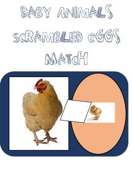 Baby Animals...Scrambled Eggs Match