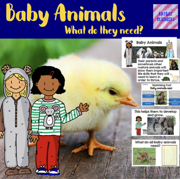 Baby Animals - What Do They Need?