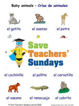 Baby Animals in Spanish Worksheets, Games, Activities and Flash Cards