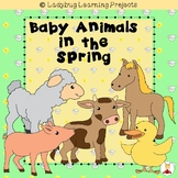 Baby Animals in the Spring  (Emergent Reader and Teacher Lap Book)