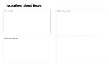 Baby Bears Graphic Organizer