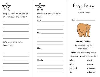Baby Bears Trifold - Wonders 2nd Grade Unit 2 Week 4