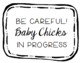 Baby Chicks Embryology Sign