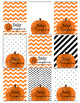 Baby Pumpkin Small Foldover Party Favor Tags