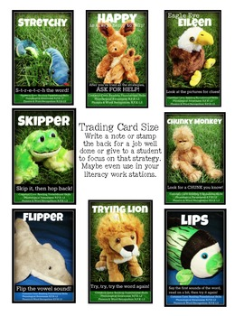 Baby Stuffed Animal Decoding Reading Strategies Labeled with Common Core