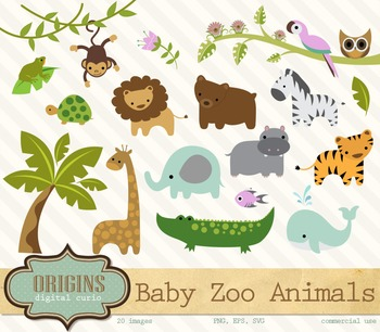 Baby Zoo Animals Clipart By Digital Curio Teachers Pay Teachers