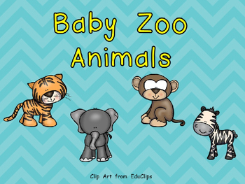 Baby Zoo Animals- Nonfiction Shared Reading- Level B Kindergarten