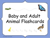 Baby and Adult Animal Flashcards