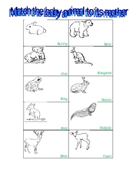 Baby and Adult Animal Matching Cards with Activities