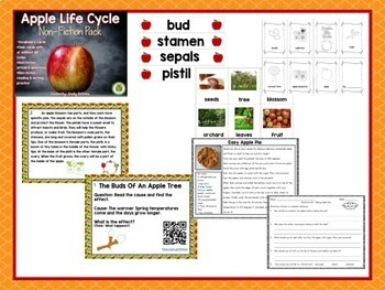 Back To School Literacy Centers Low Prep Literacy Printables