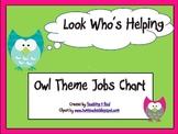 Back To School Owl Themed Class Job Chart
