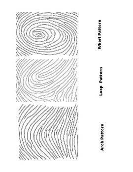 Back To School: Science All About Me Fingerprint Activity