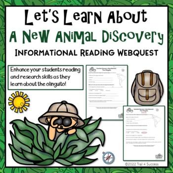 A New Animal Webquest - Meet the Olinguito