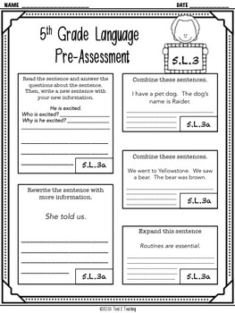 Back to School 5th Grade Language CCSS Pre/Post Assessment (5.L.3)