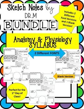 Back to School Anatomy Syllabus Sketch Notes ! Includes 3 Versions!