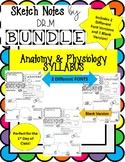 Back to School Anatomy Syllabus Sketch Notes ! Includes 3