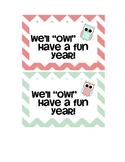 Back to School Chevron Owl Postcards