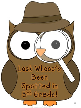 Back to School Owl Mystery Theme Bulletin Board for 5th Grade