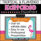 Back to School Open House PowerPoint {Tropical and Flamingo}