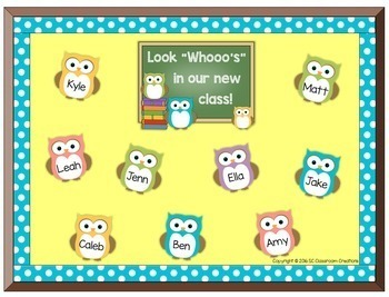 Back to School Owl Themed Bulletin Board-Classroom Decor