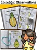 Back to School Pineapple Math, Science, & Relationship Building