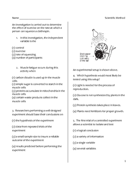 Back to Middle and High School Science Worksheet - Scientific Method
