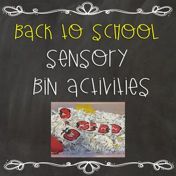 Back to School Sensory Bin