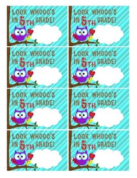 Back to School Tags K-5~ Pencil Tags ~ EDITABLE! ~ Owl Theme